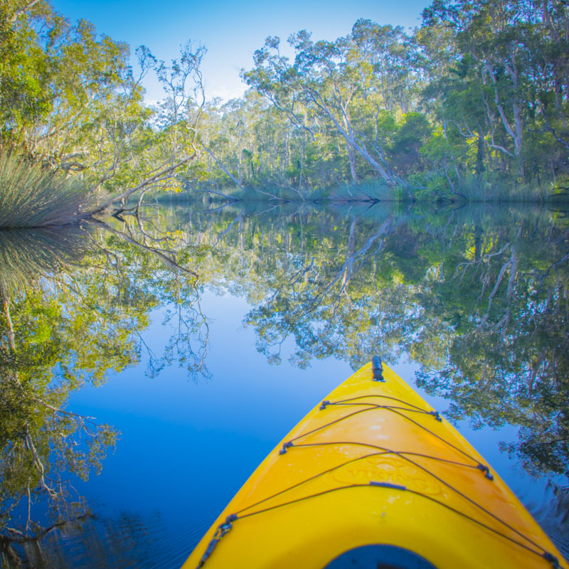 A yellow kayak drifting down the Noosa everglades near Harry's Hut